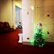 Christmas Tree in the Mausoleum