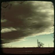 Storm Front and Cottonwood Tree November 2010